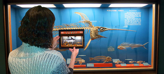 Augmented Reality for Museums, Interpretive Centers, Science Centers, Institutions